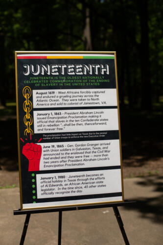 Juneteenth Celebration at Max Brandon Park